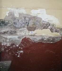 Vlazen zid. Barvanje z nepropustno barvo povzroci dvig vode visje po zidu